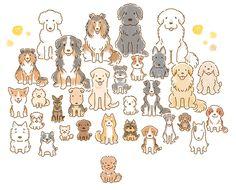 色んな種類の犬が集まってお座りしている写真