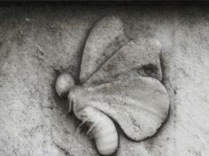 The Butterfly symbolizes resurrection, and also the soul leaving the body.
