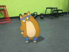 Exercising Kitty Cat.