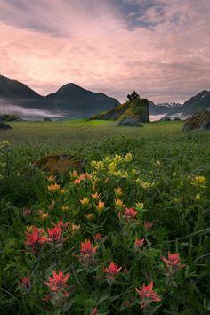 Aristocrator [travel   landscape   nature   seascape   cityscape   mountains   wild   architecture]