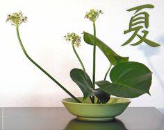 ikebana-hosta.jpg 1 280×1 024 pixels