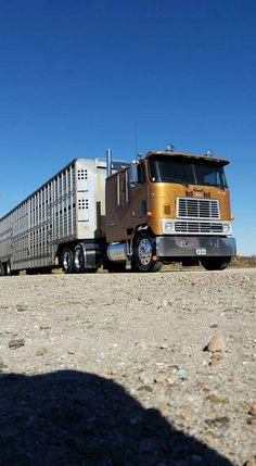 Small Trucks, Semi Trucks, Cool Trucks, Big Trucks, International Harvester Truck, Cab Over, Peterbilt Trucks, Custom Trucks, Kustom