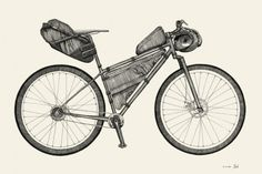 Illustrations which accompany Pannier's look at... - Rollers Instinct