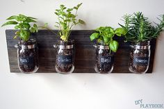 DIY Mason-Jar Organizer / planter | POPSUGAR Smart Living
