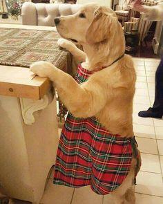 u makin' cookies....i'll help.