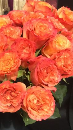 Garden Rose - available in many colors except blue. Vase life 7-10 days. www.mydaughtersgarden.com