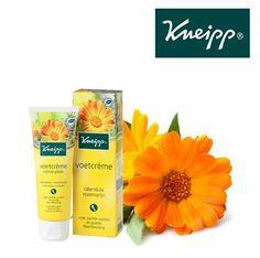 Calendula of goudsbloem verzacht de huid en kan jeuk verlichten. Het is een van de hoofdbestanddelen van onze voetcrème.