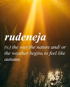 "Quotes About Fall That Prove Autumn Is The Best Season - ""Rudeneja (v.): the way the nature and/ or the weather begins to feel like autumn""—Lithuani Quotes About Fall That Prove Autumn Is The Best Season - ""Rudeneja (v.): the way the nature and/ or t. Unusual Words, Unique Words, Cool Words, Interesting Words, The Words, Words For Love, Beautiful Words Of Love, Aesthetic Words, Just Dream"