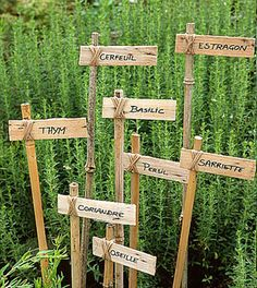 Ideas for diy garden signs plant markers herbs Veg Garden, Edible Garden, Garden Art, Garden Plants, Easy Garden, Vegetable Garden Markers, Garden Plant Markers, Vegetable Gardening, Potager Garden
