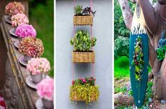 That's what I'm talking about! I have my RPDs, that make every garden and orchard look awesome! Ideas Para Organizar, Floating Shelves, Ladder Decor, Recycling, Diy, Patio, Awesome, Plants, How To Make