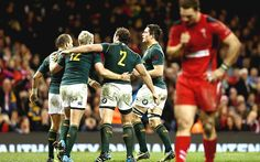 Wales 15 South Africa 24 match report - Telegraph