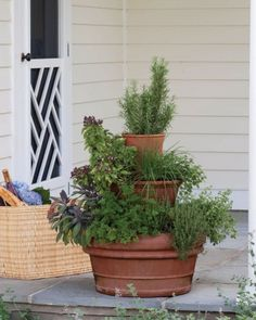 Outdoor Living: Container Garden Ideas - Martha Stewart |    Our planter has rosemary, sage, parsley, thyme, oregano, basil, and chives -- all readily available in nurseries and versatile in the kitchen. Any herbs can be used. If you want to grow mint, plant it on its own in the top pot, since it can overwhelm other herbs. (Click to see more info).