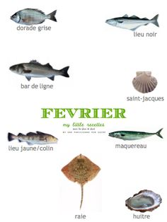 Février : produits de saison, poissons - My Little Recettes Chocolate Slim, Nutrition Drinks, Batch Cooking, Detox Recipes, Permaculture, Healthy Life, Seafood, Crafts For Kids, Food And Drink