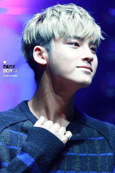 Mingyu = mine ❤️ lol jk Mingyu for everyone