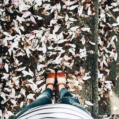 The bump is officially photobombing all #fromwhereistand shots from here on out.