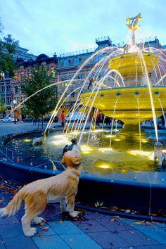Dog fountain, Toronto