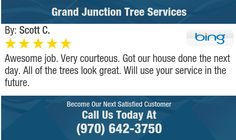 Awesome job. Very courteous. Got our house done the next day. All of the trees look great....