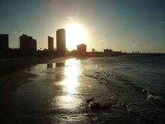 Iracema Beach - Ceará - Brasil