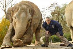 Le più belle foto di amicizia tra uomo e animali