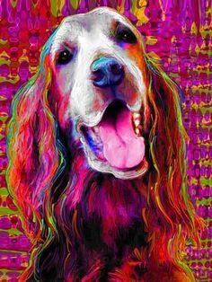 Irish Setter Art - irish-setters Fan Art