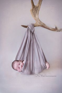 Newborn Deer Antler Composite Hanging Pose. Windsor Newborn Photography…