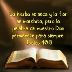 Isaias. 40-8