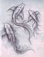 Resultado de imagen para koi fish drawings in pencil