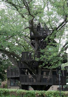 Tucker's Treehouse em St. Louis Park, Mineápolis, Estados Unidos. A bela casa, construída nos anos 1980, infelizmente se desmanchou em 1° de abril de 2014.
