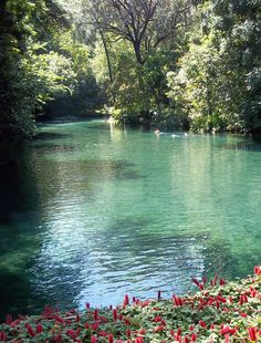BRACKISH WATER   HAVE TO KNOW SALINITY OF WATER FOR SCUVA DIVING!  Brazil, Caldas Novas - GO