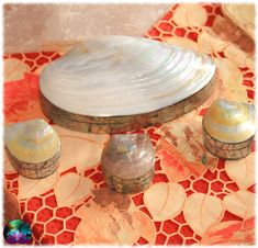 Superbes coffrets en coquillage et paua qui mettront de la délicatesse dans vos cadeaux ou sur vos meubles, à vous de choisir la taille qu vous plaît. Idéal pour bijoux, pendules, ou minéraux.
