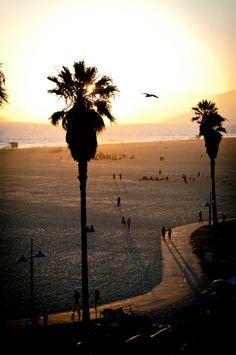 A peaceful picture of Santa Monica Beach to help calm a busy day. Echo Park, Disneyland, Ibiza Beach, Destinations, Wanderlust, City Of Angels, California Dreamin', Venice Beach, Bohol