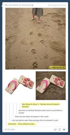 Doggie flip-flops.