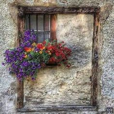 Beauty by the window Ventana Windows, Flower Window, Window Dressings, Window View, Through The Window, Old Doors, Stone Houses, Window Boxes, Door Knockers