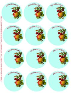 Fruit Jam/Jelly labels for lids by bitterbethany