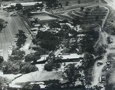 Goebel's Lion Farm Site -- (aka Jungleland) Corner of Conejo School Road and Thousand Oaks Blvd, Thousand Oaks Ventura County Historical Landmark #63 City of Thousand Oaks Landmark #13 #jmanninsurance. Jungleland, circa 1970