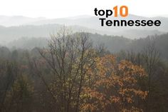 Tennessee is a state of many titles. From the birthplace of rock and roll to the land of the Great Smokies, Tennessee is a travel utopia for families that want music knowledge, a living history les...
