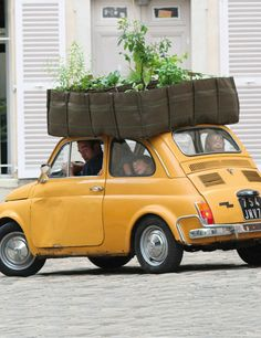 Take your garden on a road trip! We're only kind of kidding. #Urban #Gardening