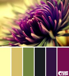 Color Palette Source by Colour Pallette, Color Palate, Colour Schemes, Color Combos, Color Patterns, Beautiful Color Combinations, Design Seeds, Colour Board, Color Stories