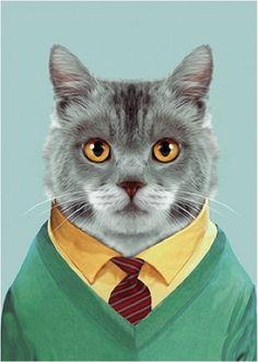 Geweldige kat #wenskaart dubbel #Card #Cat from www.kidsdinge.com www.facebook.com/pages/kidsdingecom-Origineel-speelgoed-hebbedingen-voor-hippe-kids/160122710686387?sk=wall http://instagram.com/kidsdinge #Kidsdinge