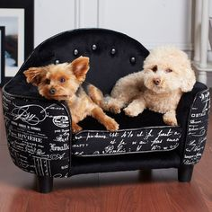 cool Pet Couch , Amazing Pet Couch 60 For Sofa Table Ideas with Pet Couch , http://sofascouch.com/pet-couch/35370