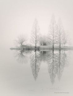 landscape photography monochromatic nature by NicholasBellPhoto