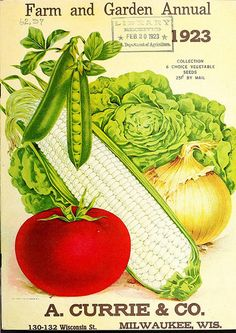 vegetable seed packet