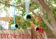 Make a bird feeder from a recycled can