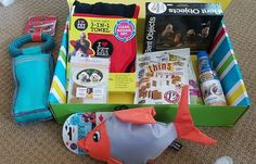 Pet Treater Monthly Subscription Box Review – August 2017