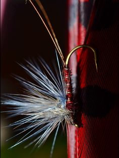 "theanglerfly: "" Flyfishing RED FLY . Photo theanglerfly . """