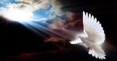 Αυτοί που «έφυγαν», μένουν για πάντα στην καρδιά μας! - DesTora.com