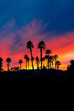 "Sunset in Palm Desert, California and if someone ""keeps"" you awake, the sunrises are spectacular, too. Amazing Sunsets, Amazing Nature, Beautiful Sunset, Beautiful Places, Beautiful Sites, Beautiful Scenery, Amazing Places, Beautiful Landscapes, Pretty Pictures"