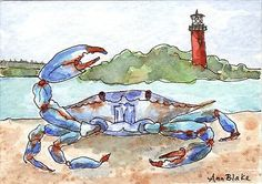 Watercolor Blue Crab Jupiter FL Lighthouse Original Art Local Artist ACEO Nfac | eBay