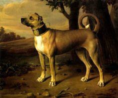 cachorro-dogue-alemo-1705-pintor-johann-marck-tela-repro-12644-MLB20062923856_032014-O.jpg (500×417)