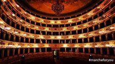 """Teatro dell'Aquila - #Fermo """"È un piacere ammirarti.."""" Buona serata a tutti dal fantastico Teatro dell'Aquila!  ❤ Foto di @mpiccia"""